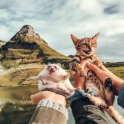 Авантурите на еден еж и на една бенгалска мачка се хит на Инстаграм