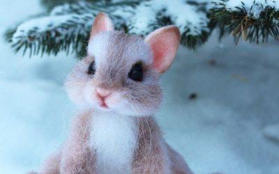 Слатките волнени животинчиња од една руска уметница може да ве хипнотизираат со своите љубопитни очиња