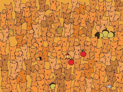 За оние со око соколово: Можете ли да го најдете глувчето меѓу сите овие верверички?