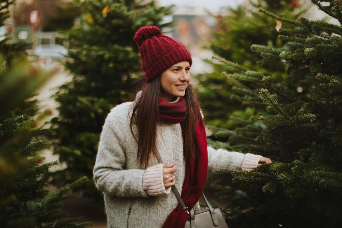 Два сигурни начини на кои за 5 секунди може да одредите дали елката која ја купувате е свежа