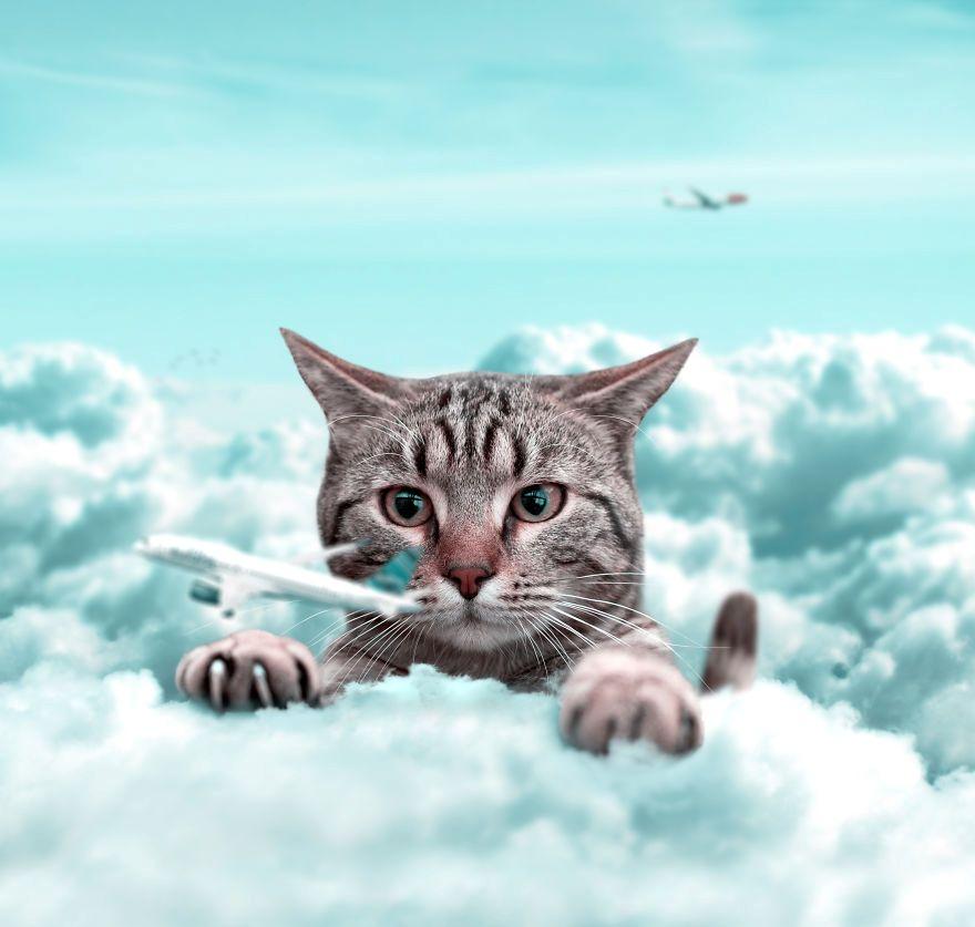25 редизајнирани фотографии со животни што изгледаат надреално и магично