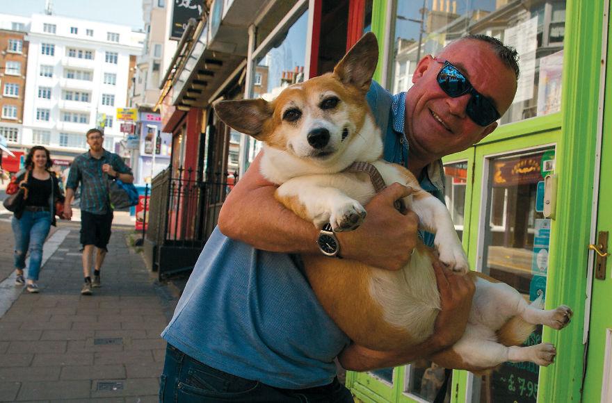30 фотографии од кучиња направени од уличен фотограф кој е професионалец при фотографирање совршени моменти