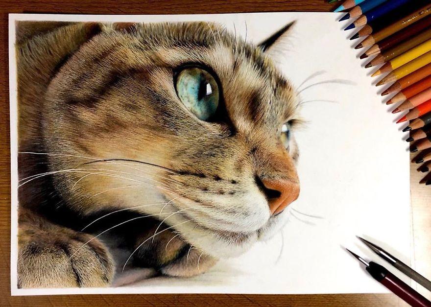 23 неверојатно реалистични цртежи на мачки