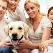 Еден ветеринар открива што прават миленичињата во последните моменти од животот и тоа е многу тажно