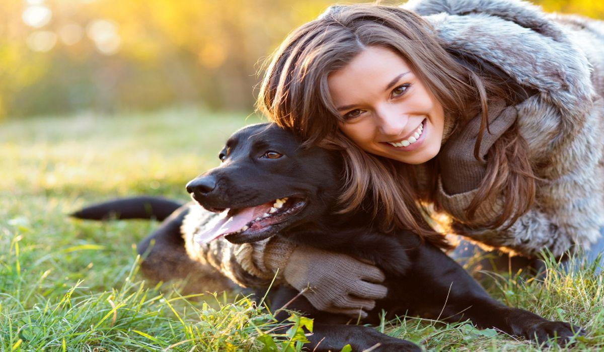 Понекогаш станува збор за ситници: Овие 8 знаци покажуваат дека вашето куче ви е луто
