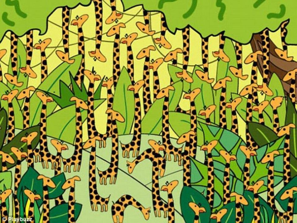 За оние со око соколово: Можете ли да ја најдете змијата меѓу сите овие жирафи?
