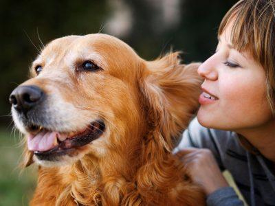 7 совети: Како да се грижите за домашните миленици за време на пандемија