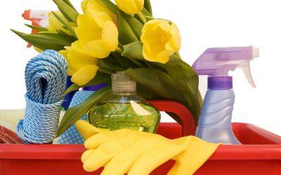 Време е за пролетно чистење на домот: Со овие совети, тоа ќе биде многу лесна задача!
