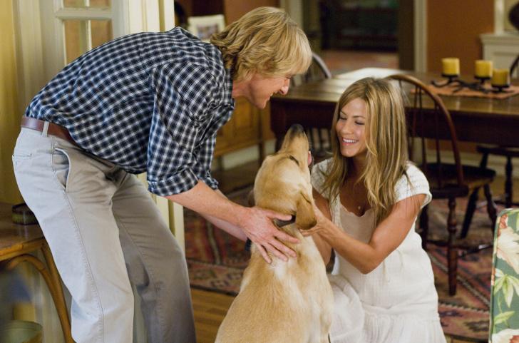 4 причини зошто паровите кои се грижат за куче се посреќни