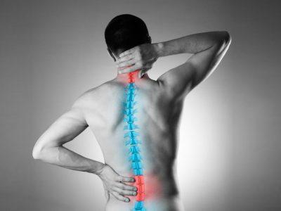 Кога срцето е загрозено, боли седмиот прешлен: Вака се поврзани сите органи со 'рбетот