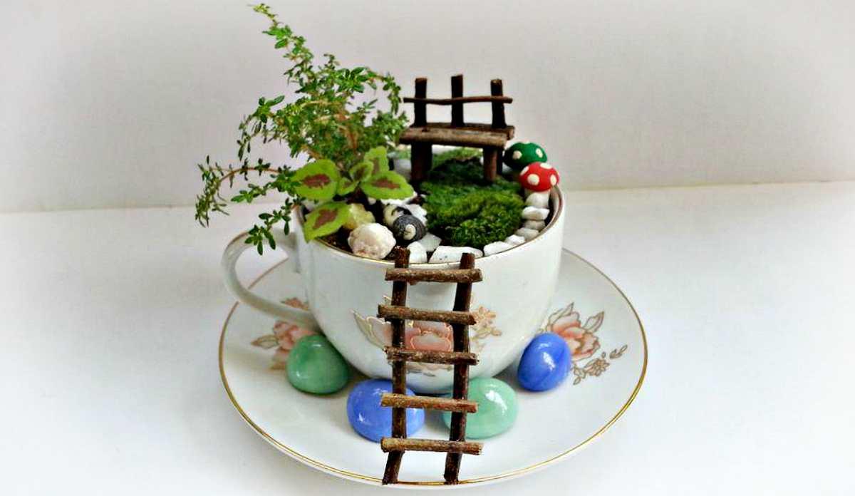 Градините во шолја за чај стануваат симпатичен тренд