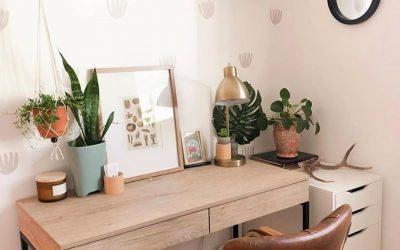 Освежете го домот за време на изолацијата: Како да го транформирате просторот со помош на растенија?