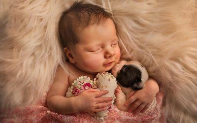 15 фотографии од новороденчиња со животни што ќе ве шармираат