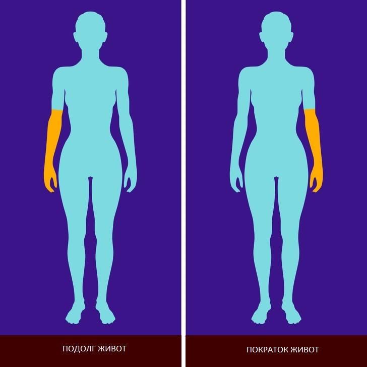 8 факти за вашето тело кои укажуваат на тоа дека ќе живеете подолго