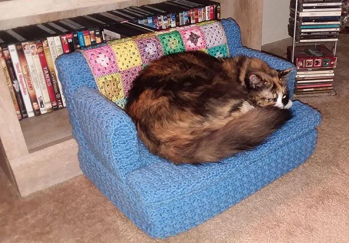 Плетени каучи за мачки кои станаа вирален хит