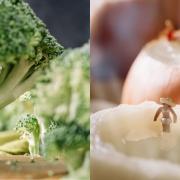 Патувачка блогерка создава прекрасни сцени од природата користејќи секојдневни прехранбрени производи
