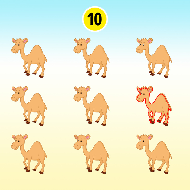 Тест: Тестирајте ги вашите вештини за набљудување со овие 15 слики