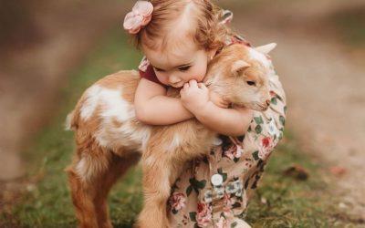 15 слатки фотографии од деца што гушкаат животни