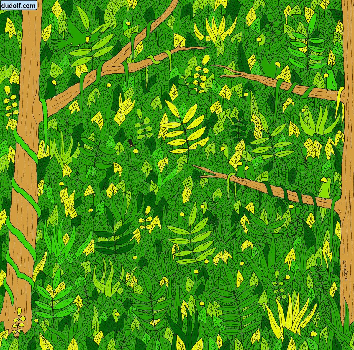 Загатка: Дали можете да ја пронајдете змијата во џунглата?