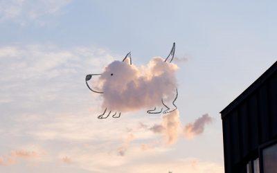 Илустратор од Даблин ги претвора облаците во слатки животни
