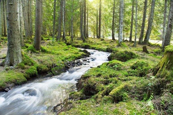 Тест: Водната површина што најмногу ве привлекува открива тајна за вас