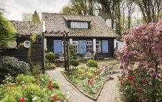 Двор во кој љубителите на цвеќиња би се чувствувале како во рајот