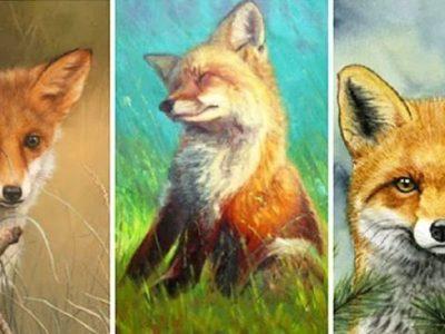 Тест: Изберете лисица и откријте нешто ново за себе