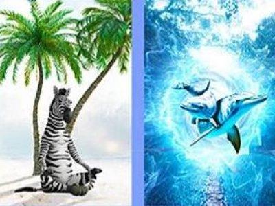 Тест: Изберете слика и дознајте што ве чека ова лето