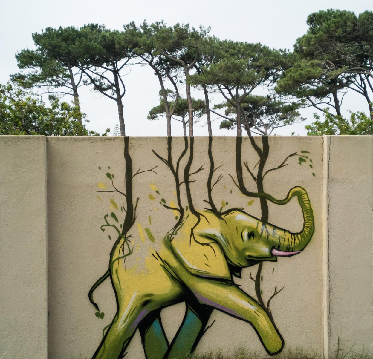 Артист создава неверојатни мурали со слонови кои ја разубавуваат околината