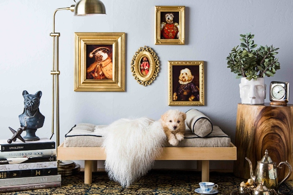 Оригинални идеи за создавање куќи за кучиња