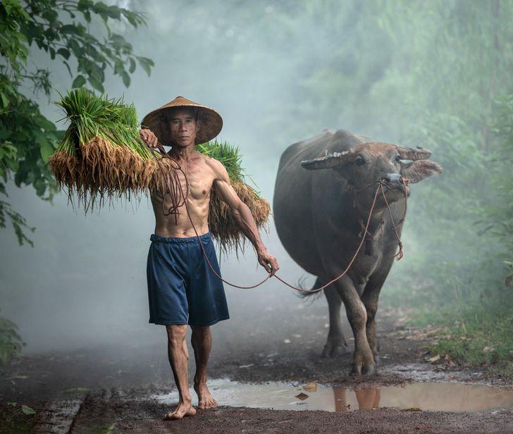 Фотографии кои докажуваат дека различностите го прават светот поубав