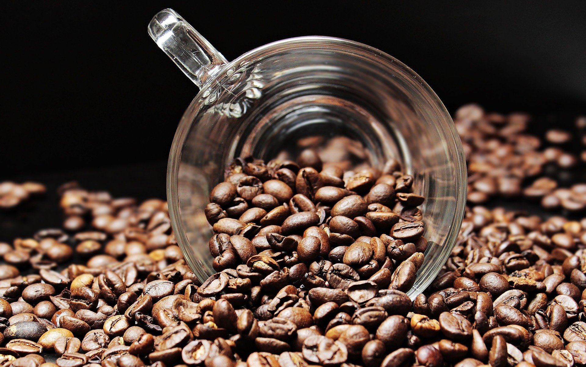 Со помош на кафето можете да се ослободите од комарците, а откријте и за што друго може да ви помогне