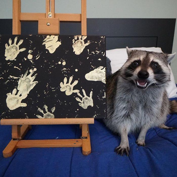 Фотографии од среќни и горди ракуни кои позираат до нивните уметнички дела