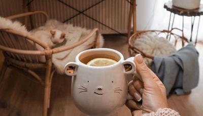 Едноставни трикови со кои можете да создадете пријатна есенска атмосфера во домот