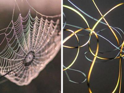 14 фотографии што откриваат како изгледаат секојдневните предмети под микроскоп
