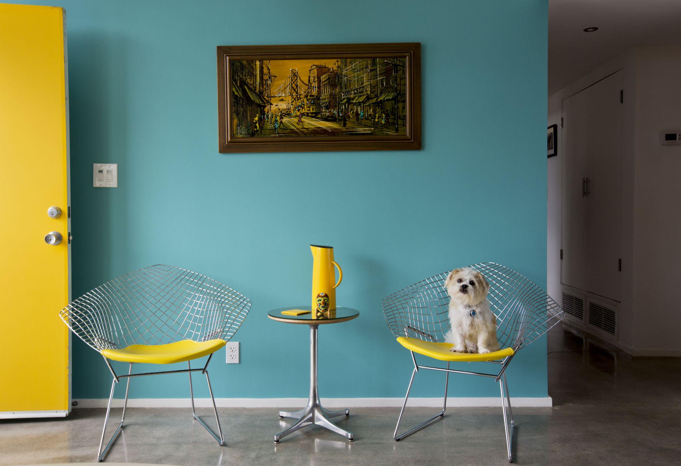 Фотографии од слатки кучиња и нивните средновековно модерни домови