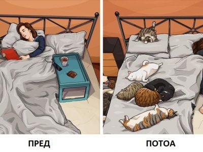Илустрации што покажуваат како изгледа животот пред да имате домашно милениче и потоа
