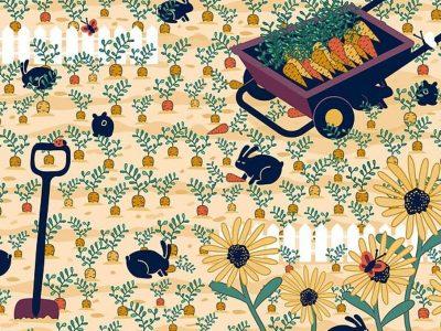 Предизвик за оние со око соколово: Можете ли да го пронајдете прстенот во оваа градина?