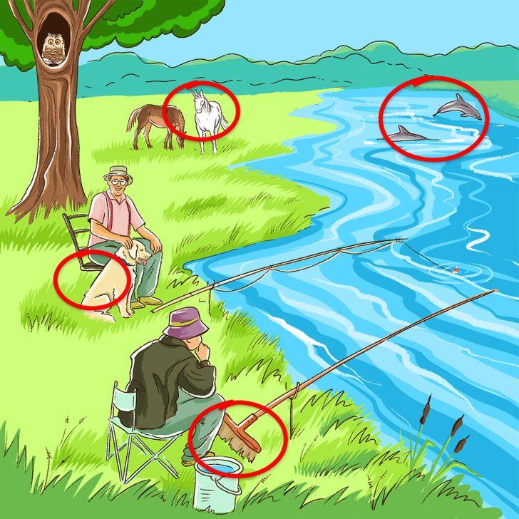 Тест: Пронајдете ги сите грешки во овие 10 илустрации