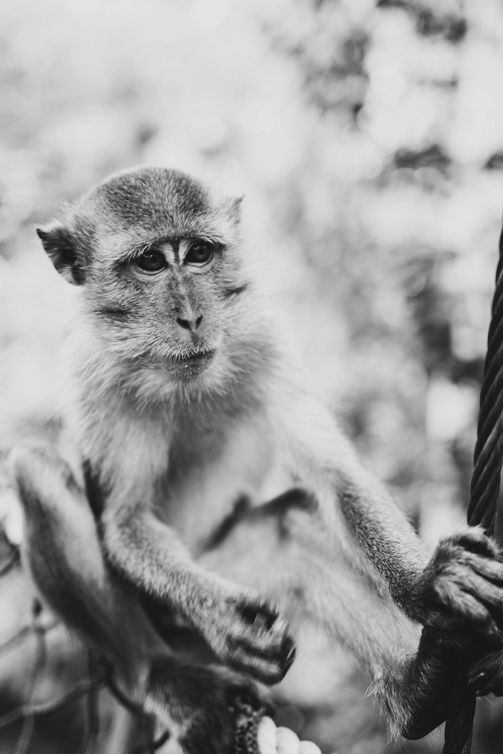 Патувајте низ Азија преку овие неверојатни фотографии