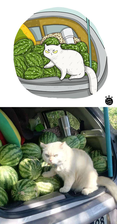Артист претвора фотографии од мачки во смешни илустрации