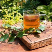 Го отстранува вишокот вода од организмот, лечи кожни болести: Ова е најлековитото растение!