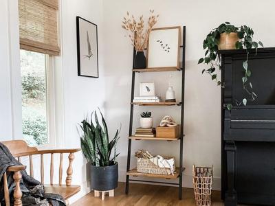 Еве како да ги организирате полиците за книги и да го освежите домот