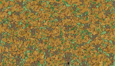 Викенд предизвик: Пронајдете ја верверичката скриена во есенските лисја