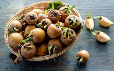Ликер од мушмули: Го прочистува црниот дроб, ги регулира холестеролот и варењето на храната