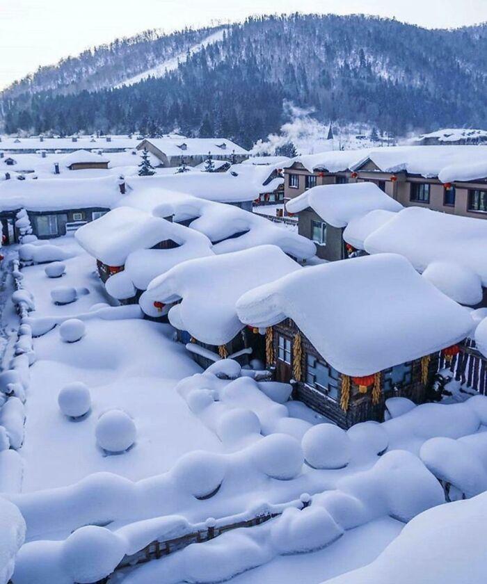 20 ситуации во кои луѓето направиле совршени фотографии од снегот