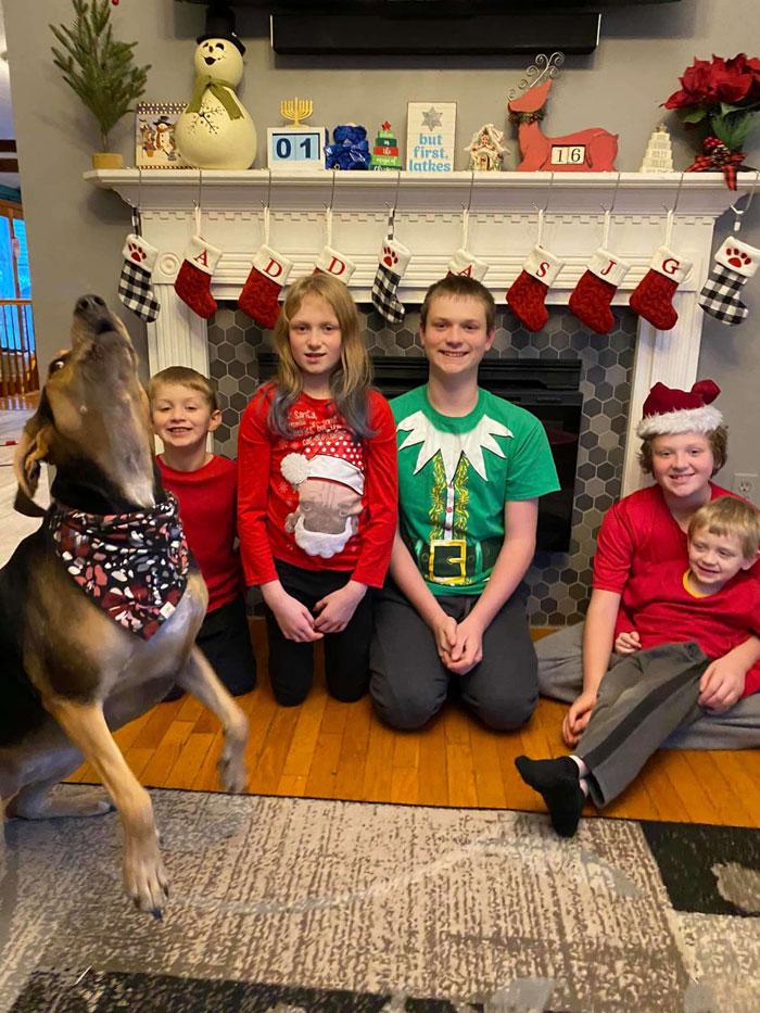 """Запознајте го Пени: Слатко куче кое им """"влегува во кадар"""" на празничните фотографии на своите сопственици"""