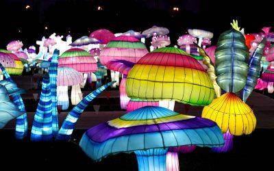 Невообичаено: Сцените од фестивалот на светлата во Њујорк ќе ве остават без здив!
