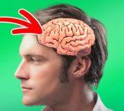5 знаци што покажуваат дека луѓето започнале да еволуираат прилично брзо