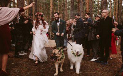 Најдобрите свадбени фотографии од различни делови на светот